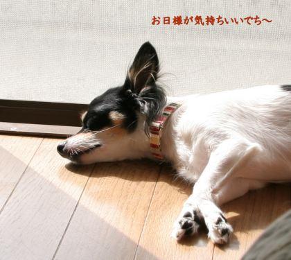 Suimin5