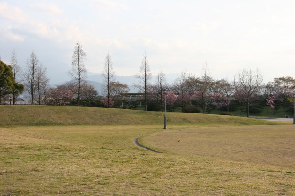 Hiuchi1