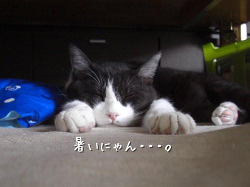 Hokuto
