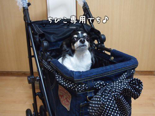 Mothercart5